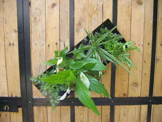 Mur végétal pivotant à 360°
