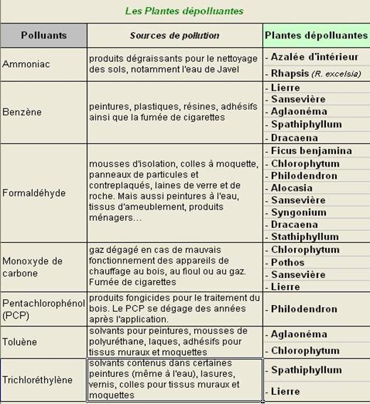 Tableau des principales plantes dépolluantes