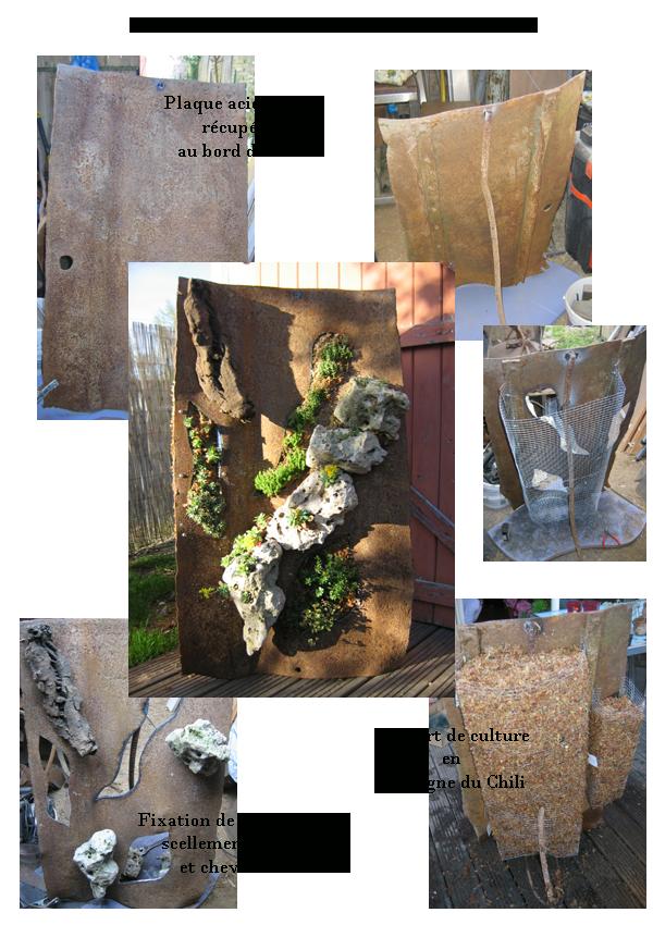 Rocaille verticale, plaque d'acier rouillé, roches du Lot, plantes vivaces sur sphaigne du Chili